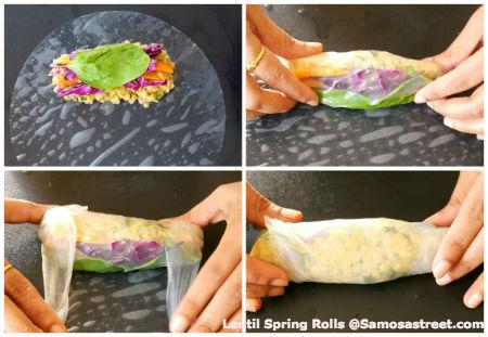 Lentil Spring Rolls